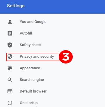 Google Chrome Privacy and Security